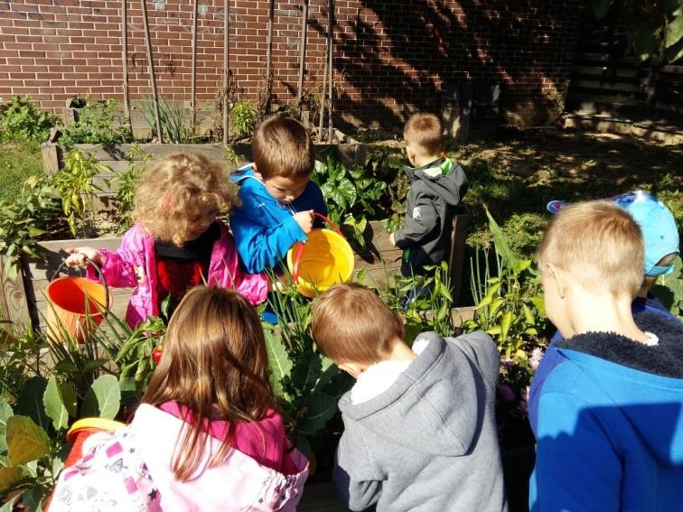 Briga o školskom vrtu