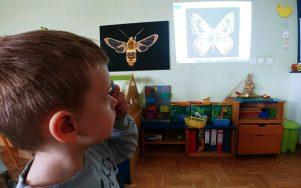 Krila plavog leptira i naši Balončići